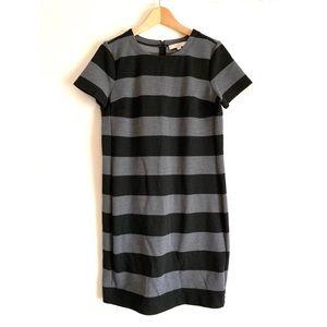 LOFT Grey Stripe Short Sleeve Mini Dres